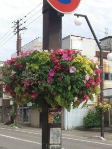 花フェスタ参加作品