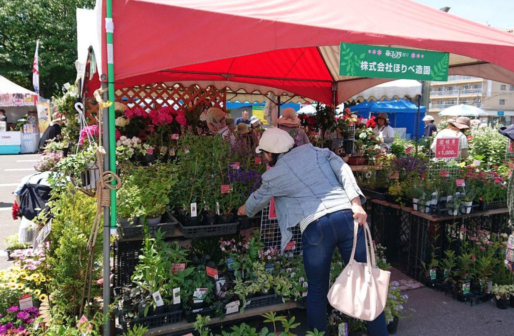 花フェスタ札幌園芸店のお店