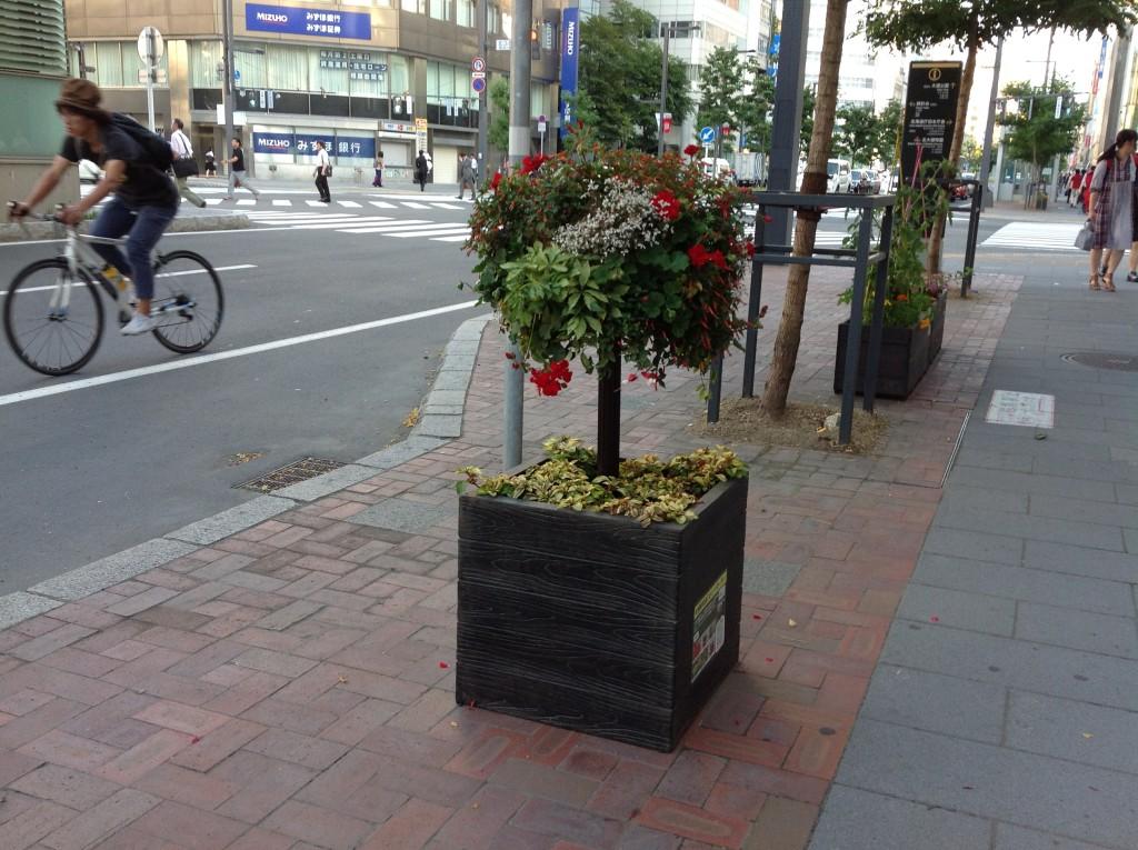 札幌駅前花装飾